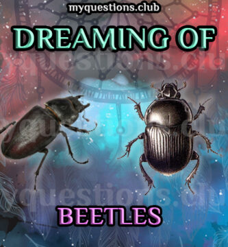 DREAMING OF BEETLES