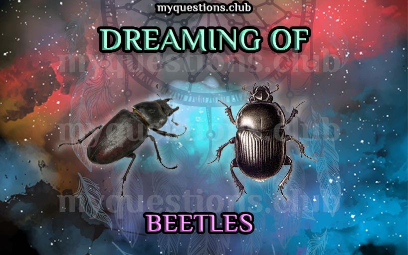 DREAMING OF BEETLES