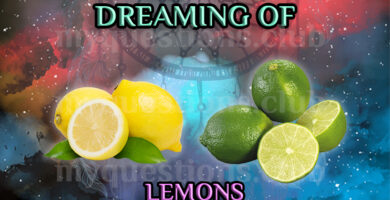 DREAMING OF LEMONS