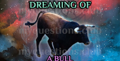 DREAMING OF A BULL