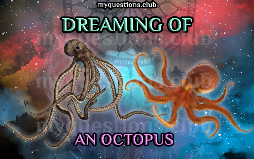 DREAMING OF AN OCTOPUS