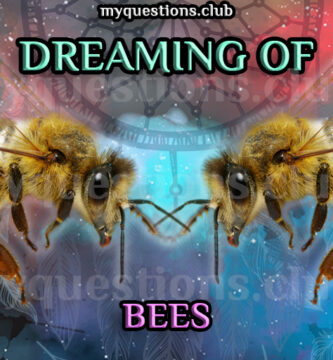 DREAMING OF BEES