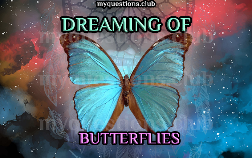 DREAMING OF BUTTERFLIES