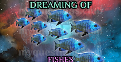 DREAMING OF FISHES