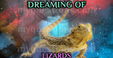 DREAMING OF LIZARDS