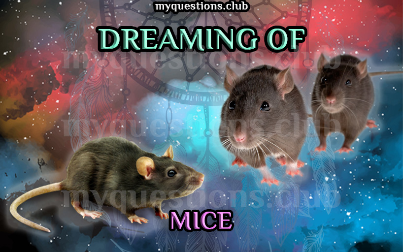 DREAMING OF MICE