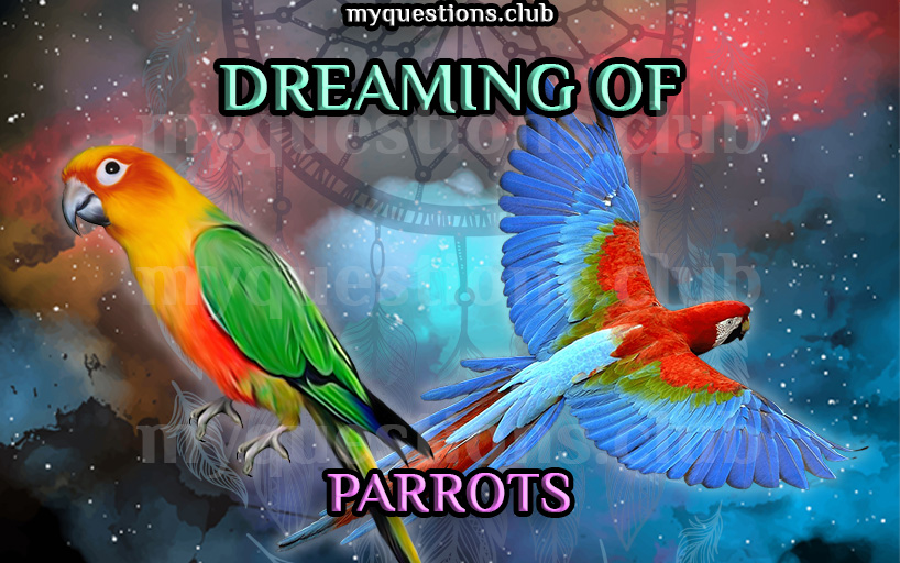 DREAMING OF PARROTS