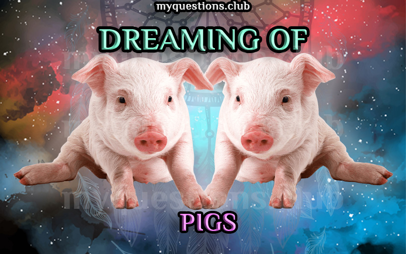 DREAMING OF PIGS