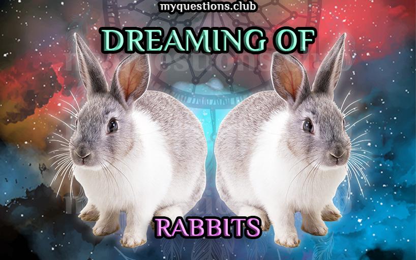 DREAMING OF RABBITS