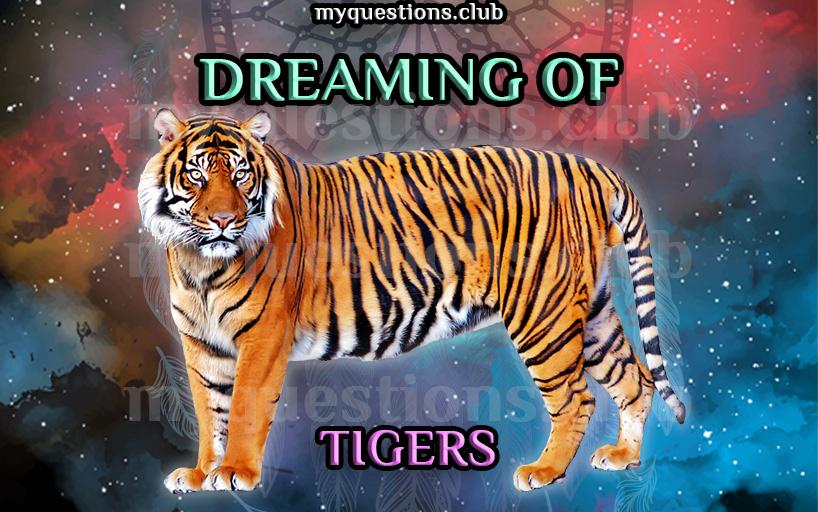 DREAMING OF TIGERS