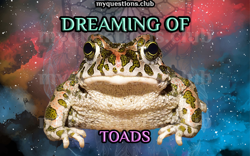 DREAMING OF TOADS