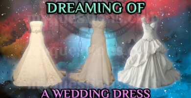 DREAMING OF A WEDDING DRESS