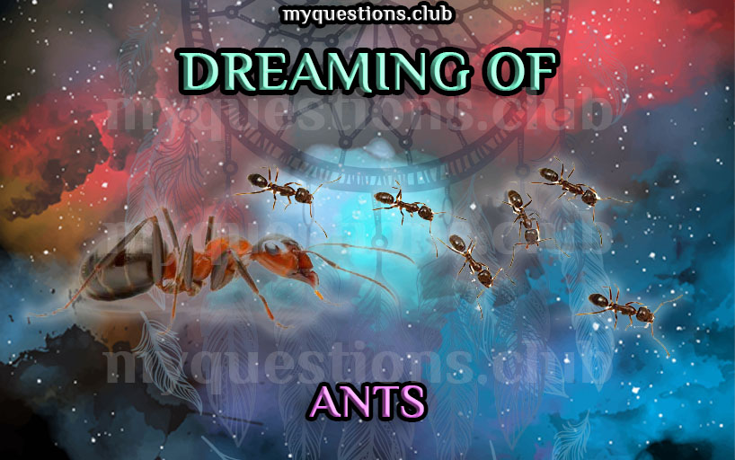 DREAMING OF ANTS