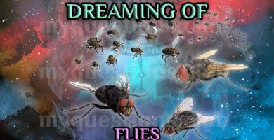 DREAMING OF FLIES