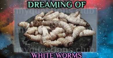 DREAMING OF WHITE WORMS