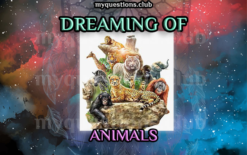 DREAMING OF ANIMALS