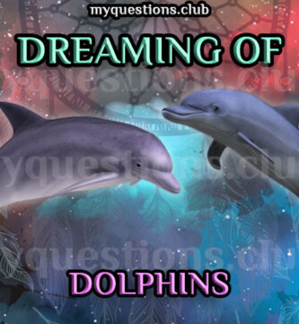 DREAMING OF DOLPHINS