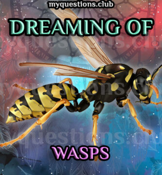 DREAMING OF WASPS
