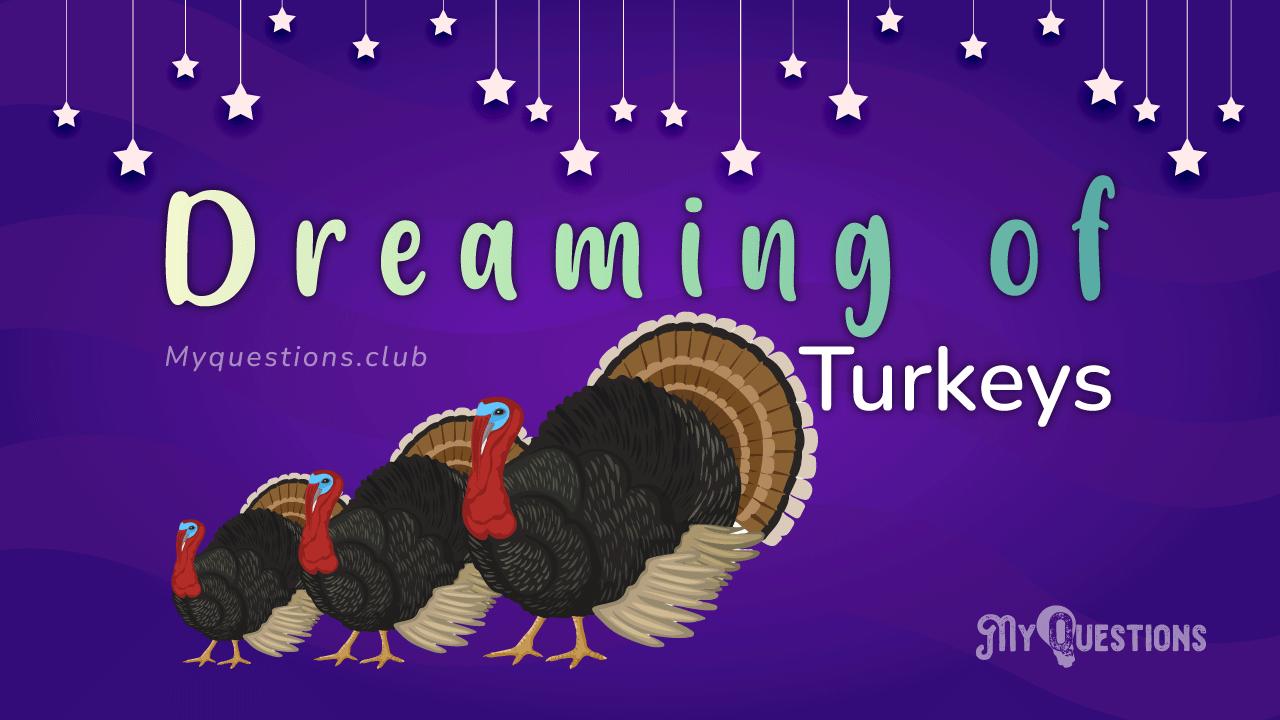 DREAMING OF TURKEYS