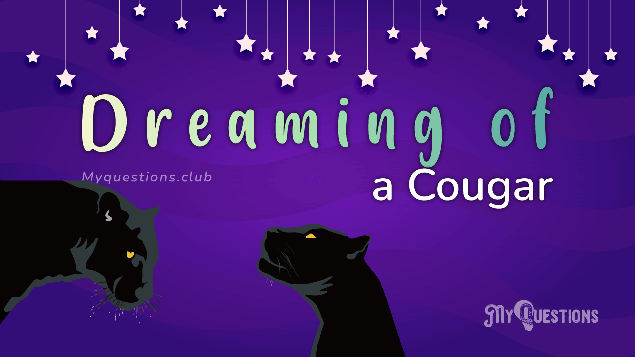 DREAMING OF A COUGAR