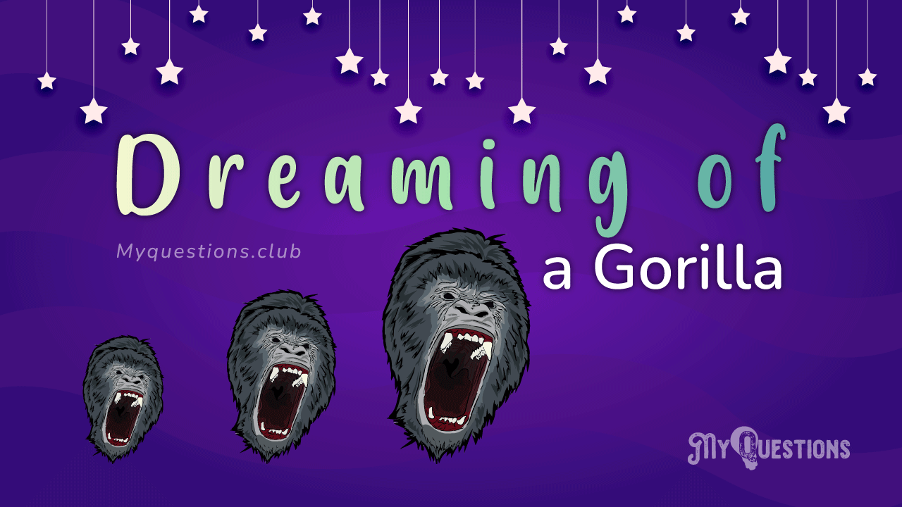 DREAMING OF A GORILLA