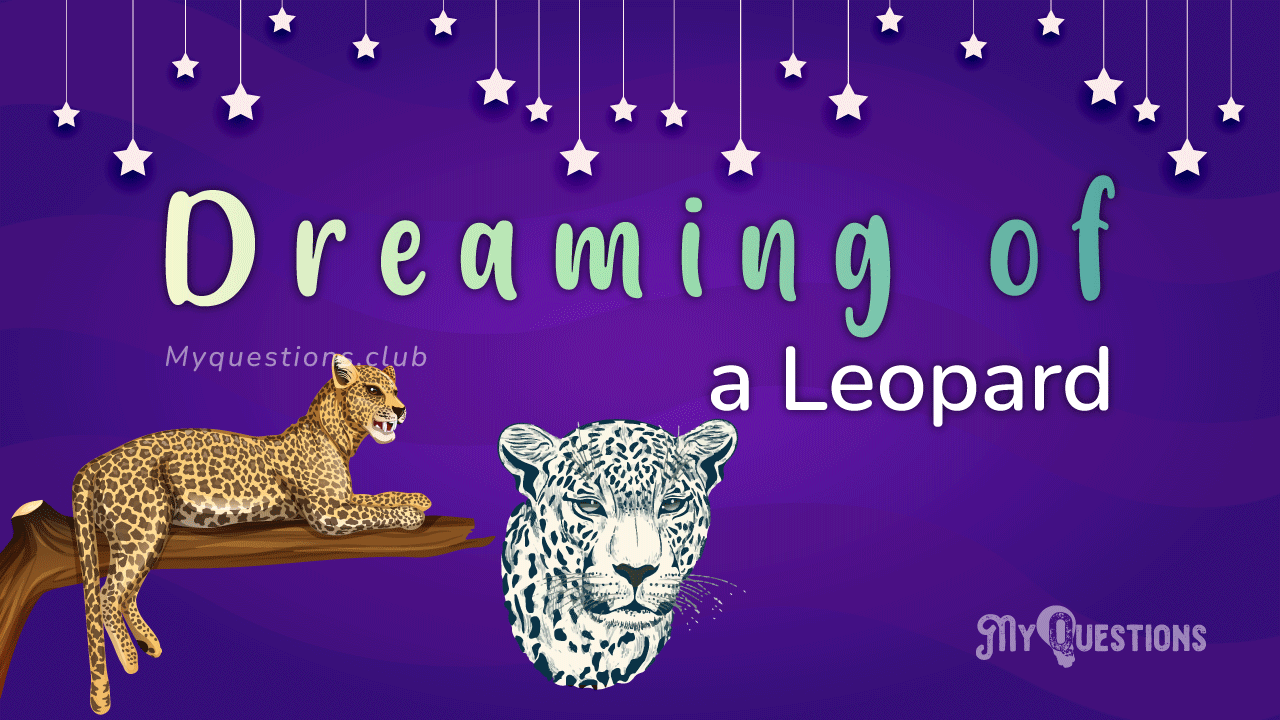 DREAMING OF A LEOPARD