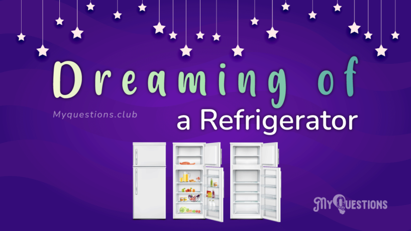 DREAMING OF A REFRIGERATOR
