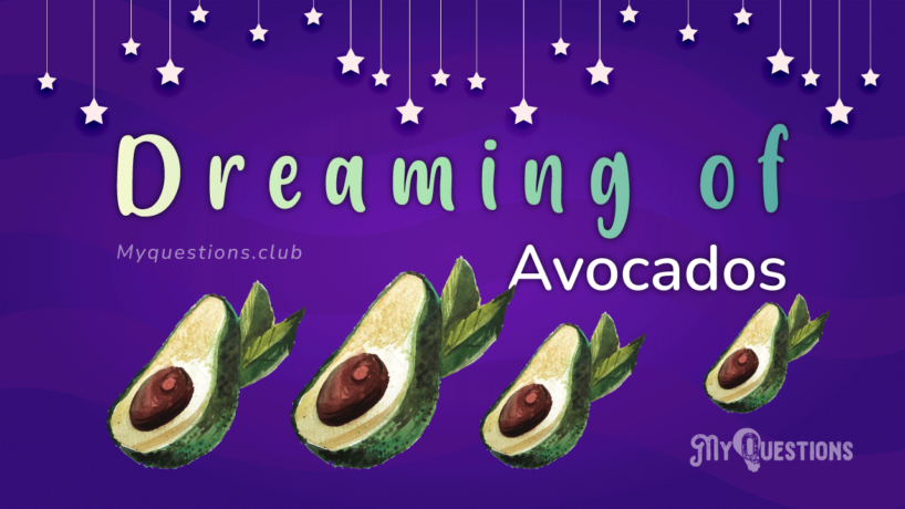 DREAMING OF AVOCADOS