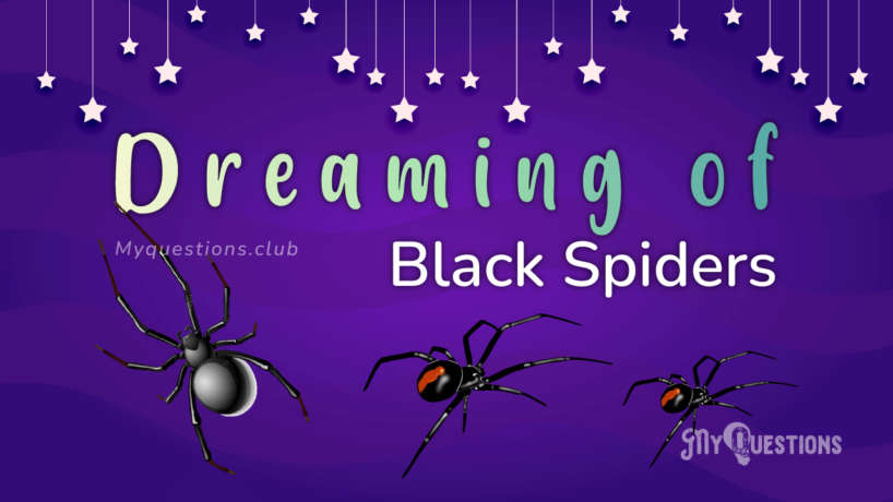 DREAMING OF BLACK SPIDERS