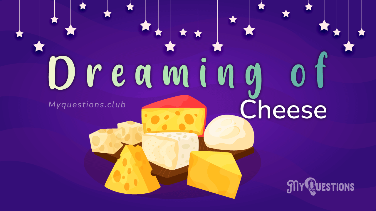DREAMING OF CHEESE