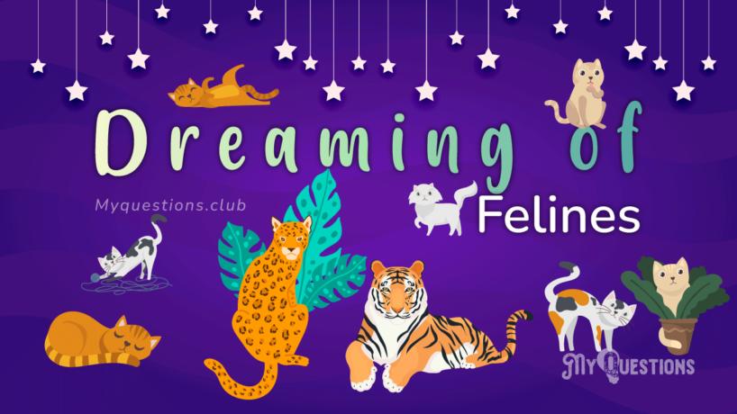 DREAMING OF FELINES