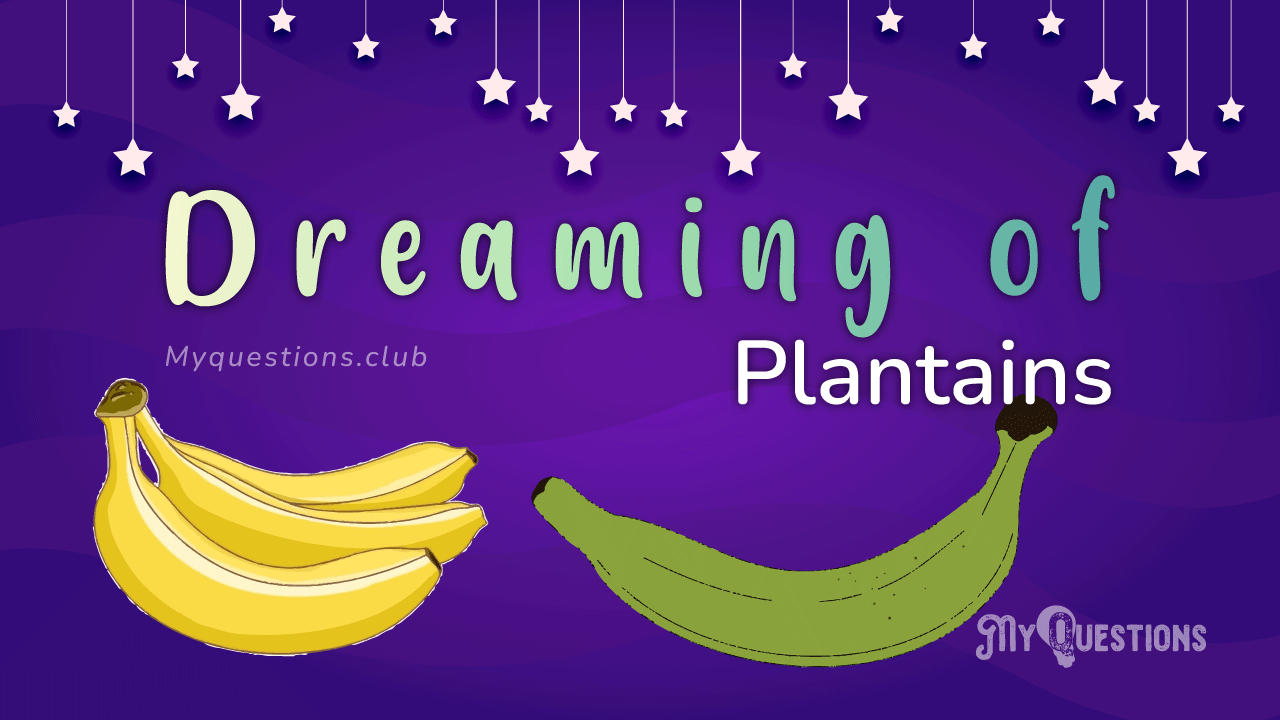 DREAMING OF PLANTAINS