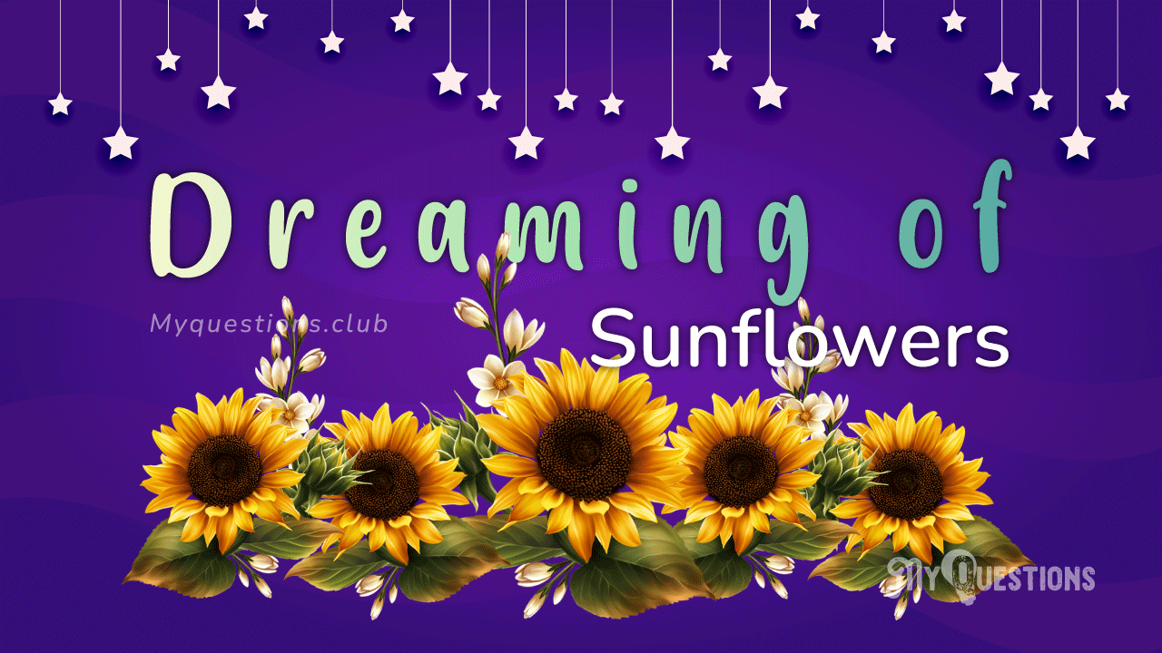 DREAMING OF SUNFLOWERS