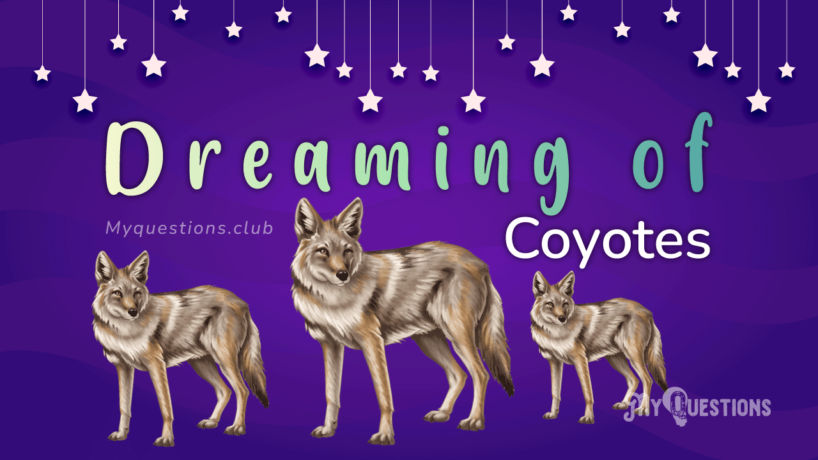 DREAMING OF COYOTES