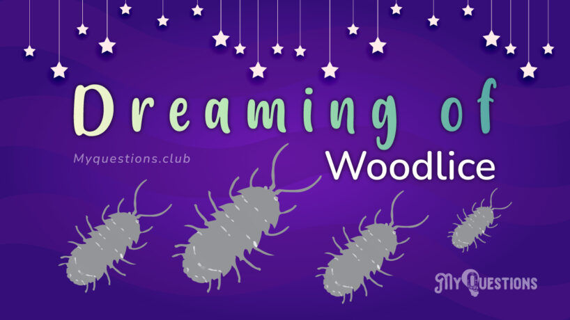 DREAMING OF WOODLICE